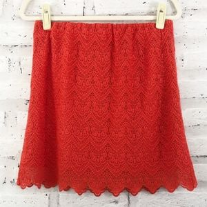 💥 J. Crew Flame Embroidered Lace Skirt